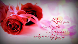 Beautiful Rose Quotes