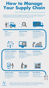Take A Look At Vision33s Supply Chain Infographic To See A