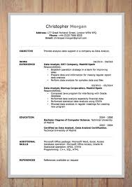 resume in ms word cv resume templates examples doc word download