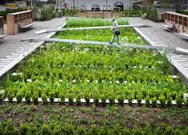 Small Picture Herb Garden Design Garden Design Ideas