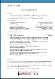 Free Resume Program Stunning Resume Templates Online Simple Resume Examples For Jobs