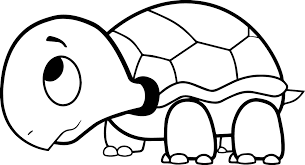 Coloring Pages Of Turtles Funycoloring