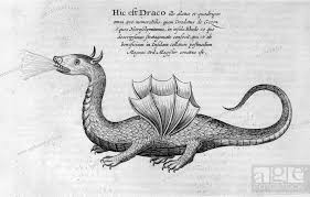 dragon 1678 a print from mundus