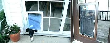 storm door doggie door screen door with door built in storm door with dog door built in pet door sliding screen door with dog door