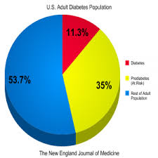 Diabetes Pie Chart Type 2 Diabetes Found In U S War On Diabetes