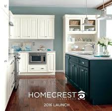 kitchen cabinets knoxville tn kitchen cabinets tn elegant best cabinetry images on of kitchen cabinets craigslist kitchen cabinets knoxville tn southern