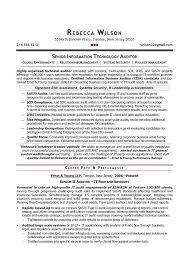 Senior Auditor Resume