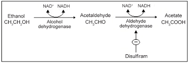 Disulfiram Reaction Alcohol Medication Interactions The Acetaldehyde Syndrome Omics