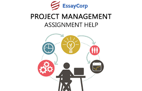 project management software project management assignment