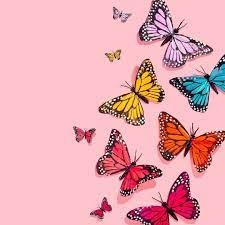 Aesthetic Butterfly Wallpapers ...