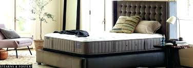 longhorns bedding longhorn queen texas king size bed ndanlamdepvn com