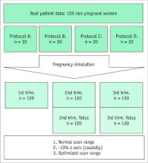 Phantom Simulation Flow Chart Explaining Simulation Process