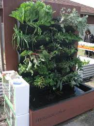 Keeping The Fish Cool In Backyard Aquaponic System Pictures With Backyard Aquaponics Forum