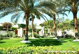 Tree Landscape Design Collection In Backyard Trees Landscaping Ideas Gorgeous Backyard Landscape Design Collection
