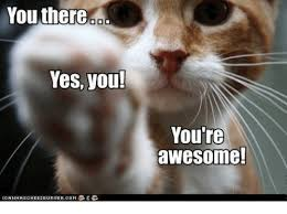 You There Yes You! You're Awesome! | Meme on ME.ME