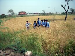 Colleges Of Agriculture Private Agriculture College In India Private Agriculture College In Up