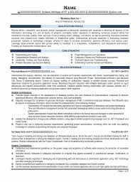 Sample Business Analyst Resume 60 Best Of Sample Business Resume Template Resume Sample Business 11