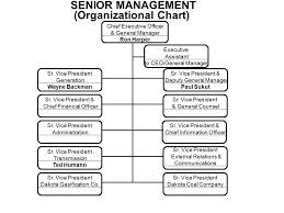 Company Organizational Chart Ceo Senior Management Organizational Chart Chief Executive