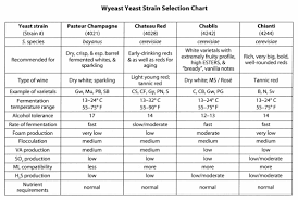 80 Skillful Yeast Comparison Chart