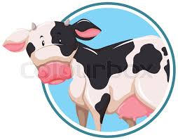 Cow Template A Cow On Sticker Template Illustration Stock Vector