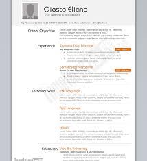 Comfortable Net Developer Resume Template Photos Example Resume