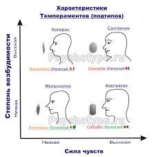 Понятие темперамента Реферат страница  Меланхолический темперамент интуитивно логический подтип Слабый неустойчивый тип нервной системы