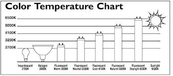 Fluorescent Light Chart Fluorescent Light Bulbs Sizes