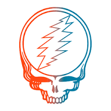 12 Organized Dead And Company Wrigley Field Seating Chart