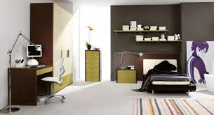 Cool Bedroom Ideas For Guys Best Design
