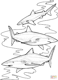 Small Picture Three Tiger Sharks coloring page Free Printable Coloring Pages