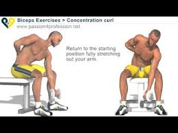 Bodybuilding Exercises Chart Free Download Pdf Bodybuilding Exercises Free Weights Youtube
