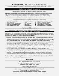 Service Delivery Manager Resume Cool Qa Manager Resume Classy Quality Assurance Manager Resume Samples