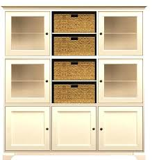 Tall Cabinet With Doors Shelves Interesting Tall Storage Cabinets
