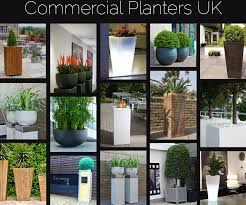 commercial planters uk  indoor and outdoor commercial planters