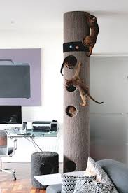 Modern Cat Tree Tower