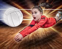 Risultato immagini per volley