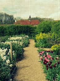 Small Picture 41 best cut flower garden images on Pinterest Flower gardening