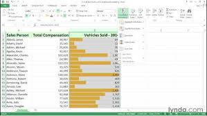 Creating Dynamic Charts With In Cell Conditional Formatting