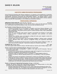 Information Technology Resume Examples Inspiration Best Executive Resume Samples Or Hr Executive Resume Sample India