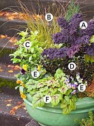 Best 25 Small Space Gardening Ideas On Pinterest  Garden Ideas Container Garden Ideas Pinterest