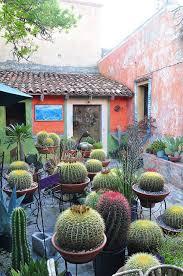 Small Picture Best 25 Cacti garden ideas on Pinterest Outdoor cactus garden