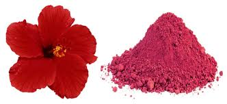 hibiscus flowers hibiscus powder daulos organic products