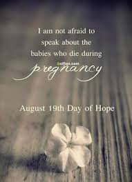 pregnancy quote by laura staroe harm