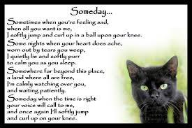 Cat Loss Quotes New Beautiful Black Cat Memorial Pet Loss Bereavement Rainbow Bridge