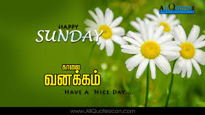 Best Ever Good Morning Sunday Quotes In Tamil Good Quotes