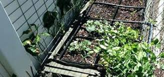 square foot garden soil mixture square foot gardening soil mix calculator garden in minutes square foot