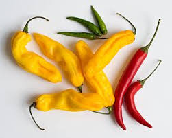 green chili pepper types. Wonderful Pepper Chili Pepper Throughout Green Pepper Types G