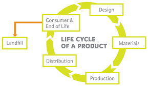 Design And Production For Sustainability Life Cycle Sustainability Sustainable Design Life Cycles