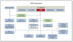 Eeo Process Chart Fiscal Year 2018 Performance And Accountability Report