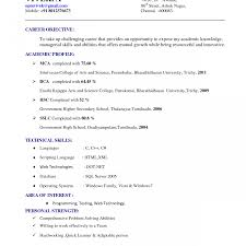 Free Google Resume Templates Google Docs Resume Template Free Best Of Sample Examples 82